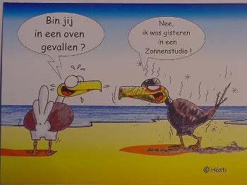 Emma-Postkarte Holland oven gevallen