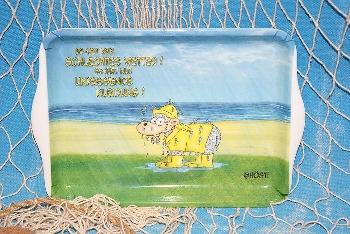 Hösti Tablett Melamin 21x14,5cm Regenschaf