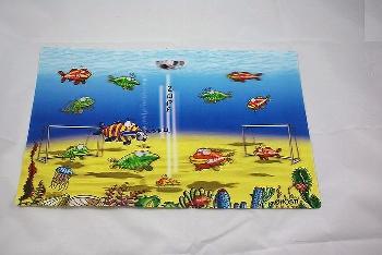 Hösti Platzset Fußball 3D ca.42,5x27,5cm