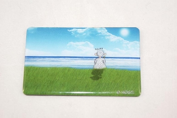 Hösti Foto Magnet ca.8x5cm Sehnsucht