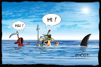 Postkarte Hai