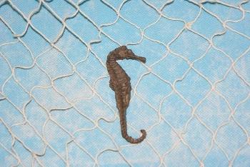Seepferdchen Polystone ca. 9 cm