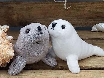 Seehund grau/weiß sortiert ca.12cm Plüsch