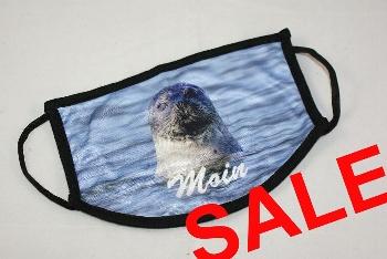 Schnutenpulli Seehund Moin