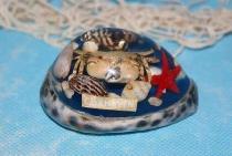 Tigermuschel mit Poly Cuxhaven ca. 7 cm