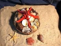 Muschelkorb mit Noppenseestern ca. 20cm
