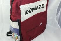 Parafoil Quad Kite 2.5 285x90cm 90+135kg +